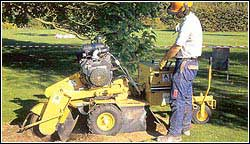 Range of Stump Grinders and Diggers Available